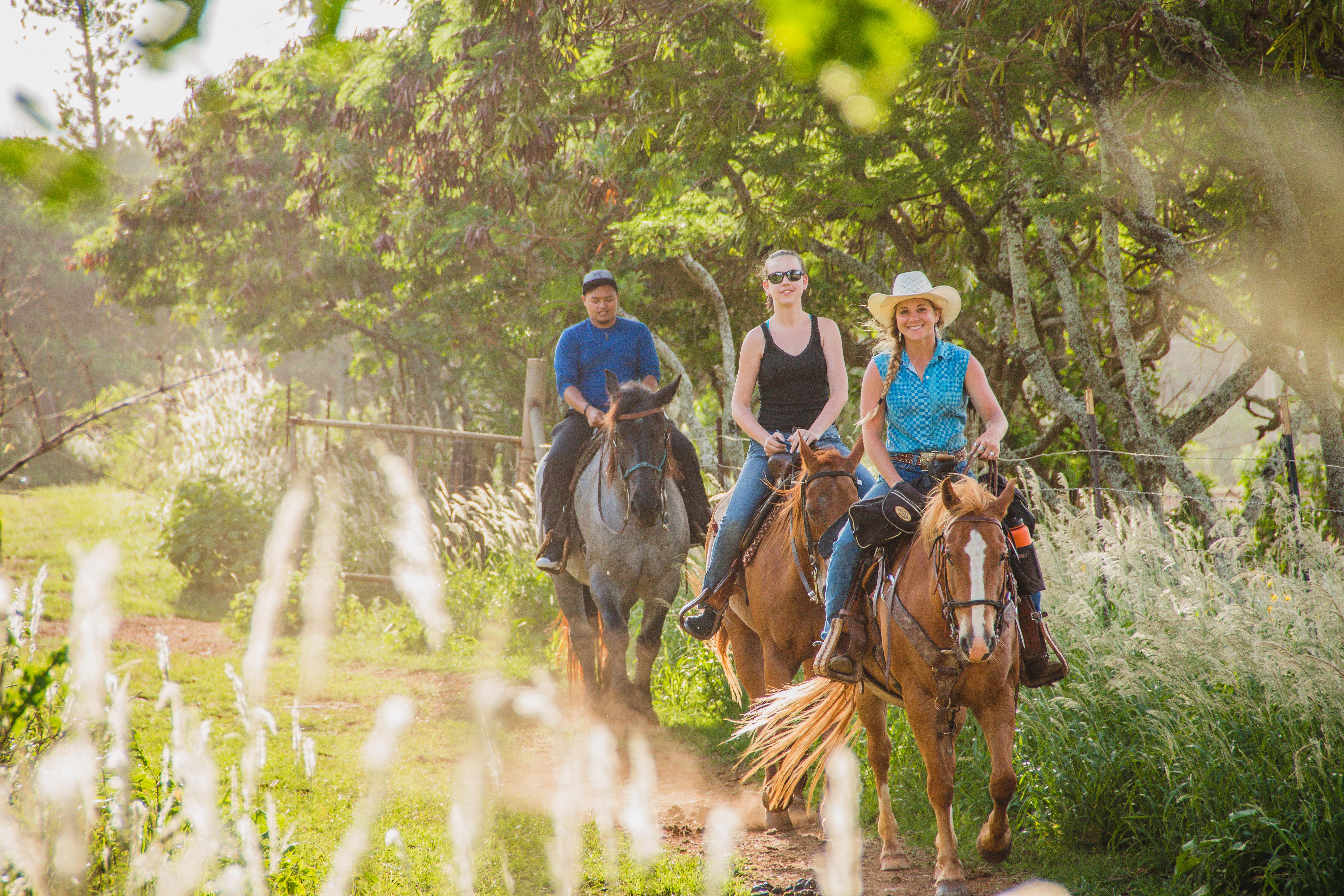 Product Scenic Horseback Ride